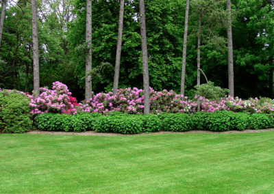 Lawn care and plant maintenance.