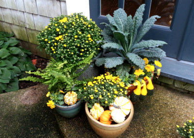 Fall container arrangement.