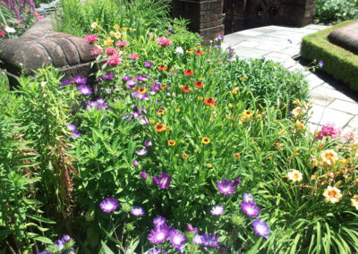 Flower bed with mix of annuals and perennials.