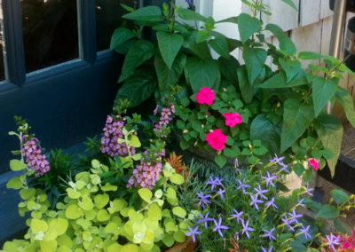 Summer containers on porch.