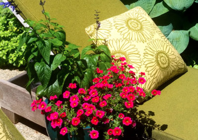 Summer container on patio.