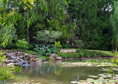 Stone waterfall with landscaped bank and pond - AFTER